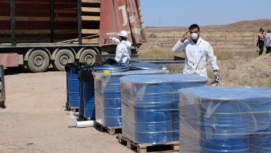 Photo of Вывезли опасные отходы с побережья Балхаша