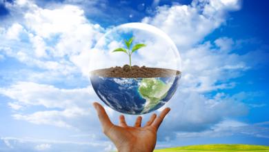 Photo of Стартовала новая программа для поддержки зеленых инициатив студентов