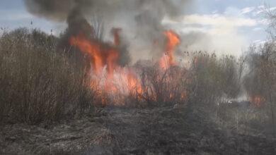 Photo of Роман Скляр дал поручения по вопросам предупреждения и ликвидации лесостепных пожаров