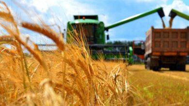 Photo of Государство гарантирует фермерам долгосрочные займы в БВУ
