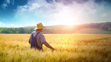 Photo of Свыше 70 семинаров для фермеров проведут аграрные ученые Казахстана в 2021 году