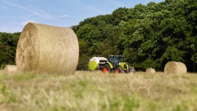 Photo of Более 43 тысяч тонн льготного ГСМ будет выделено животноводам на проведение сенокоса