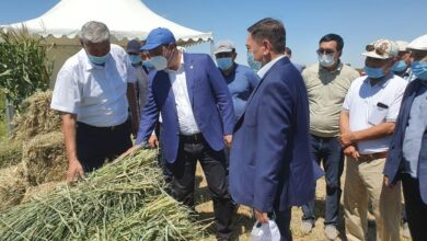Photo of В Кызылординской области планомерно решаются проблемы хозяйств пострадавших от засухи