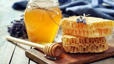 Photo of 10 предприятий по производству меда включили в реестр надежных экспортеров в Саудовскую Аравию – МСХ РК
